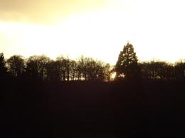 Trentham Sunset