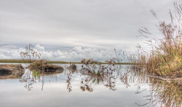 Saltmarsh Reflections by carper123