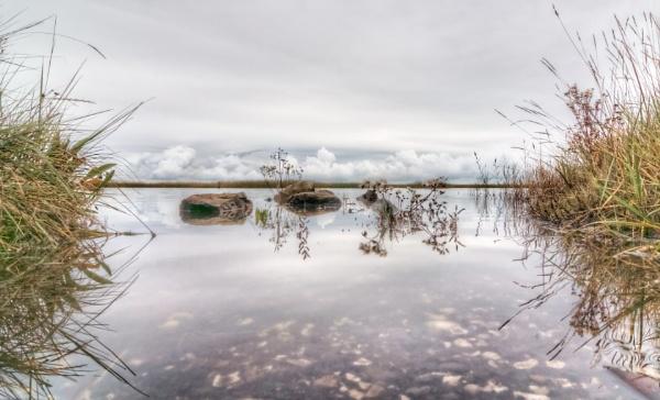 Saltmarsh Reflection 2
