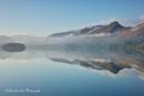 Light & Mist by janlea
