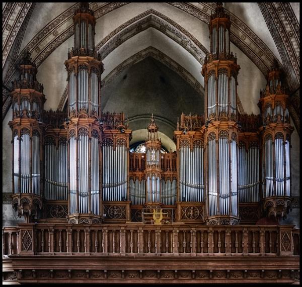 The organ by totti