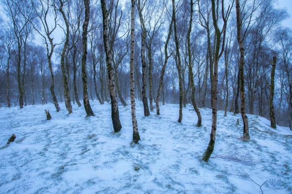 Bolehill Winter by Legend147