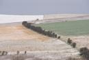 winter fields by alfpics