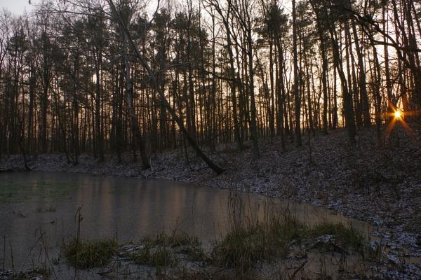 POLAND - Nature\'s Impressions No.18 by PentaxBro