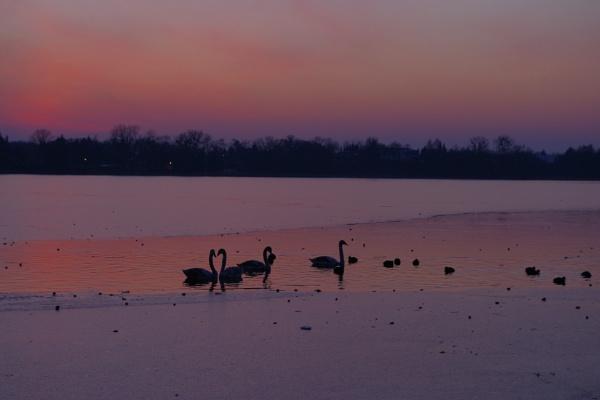 POLAND - Nature\'s Impressions No.16 by PentaxBro