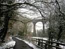 A Wintery Walk by nemasi