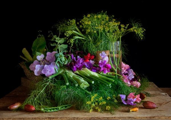 Fennel & Sweet Peas by RobDougall