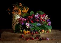 Still Life : Autumn Berries