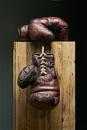 Boxing gloves by MarkScheider