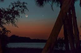 Crescent moon with venus