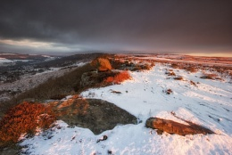 Photo : Been A Long Winter!