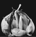 Garlic by JawDborn