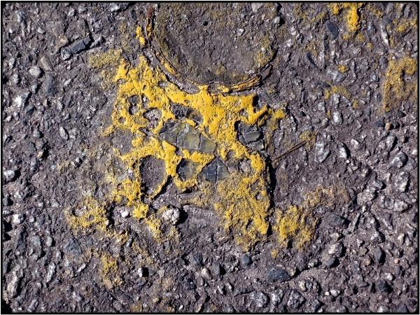 yellow traces by FabioKeiner