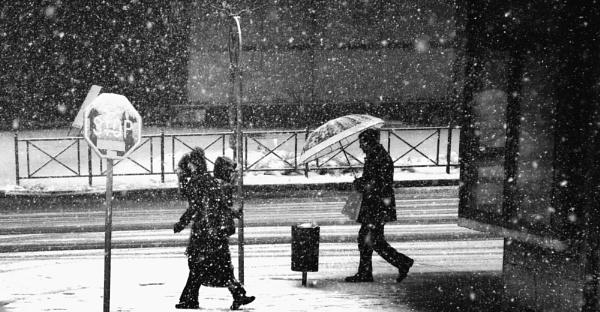 Winter Scene XLI