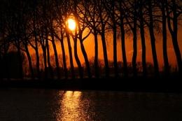 Shillouette Sun