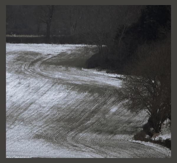Slalom by Minty805