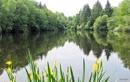 Justice Lake... by ladynewbury