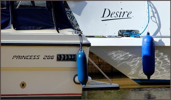 Princess Desire. by lifesnapper