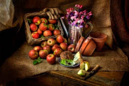 Photo : Still Life : Apples, Sweet Peas and Snail
