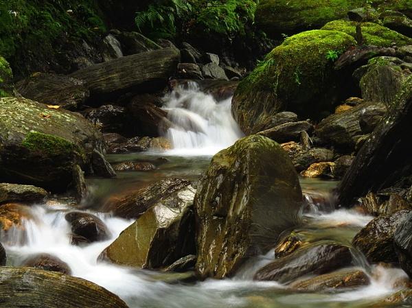 Waiho River 2 by DevilsAdvocate