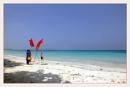 Red Flag by prabhusinha