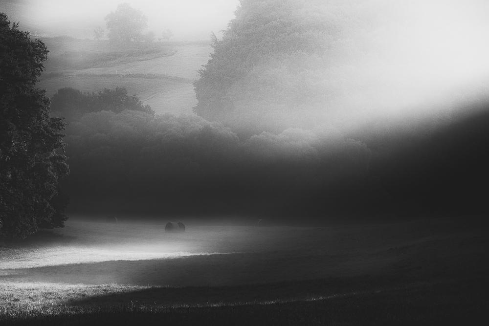 Vanishing light