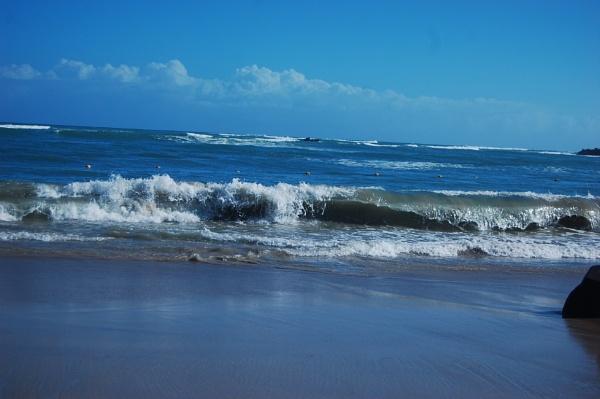 Blue,Blue,Caribbean