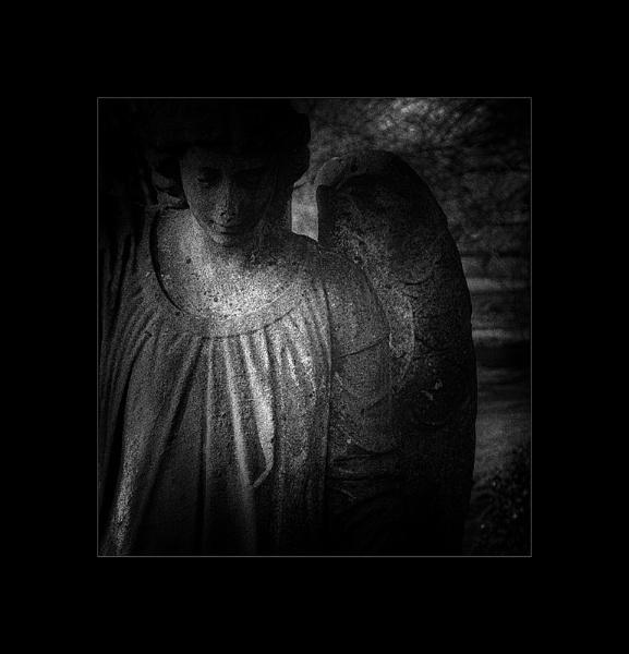 Dark Angel by whatriveristhis