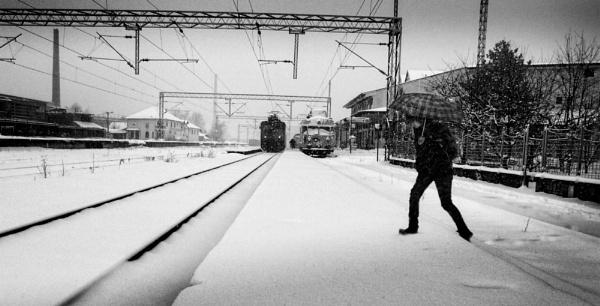 Winter Scene XLV by MileJanjic