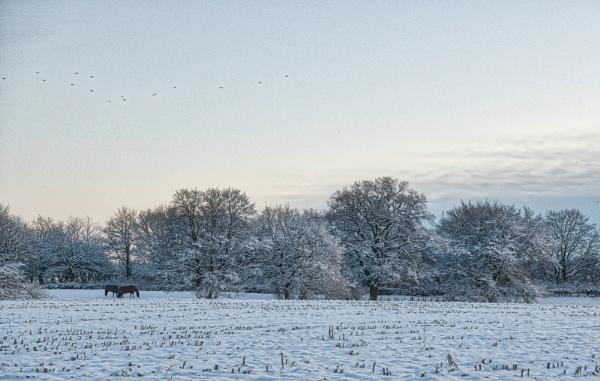 English winter scene by Ingymon