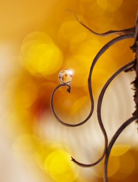 Street lamp by littleflea