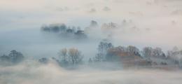 Sunlight and Mist