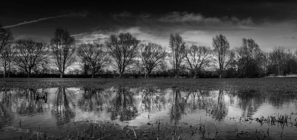 Waterlogged fields by RLF