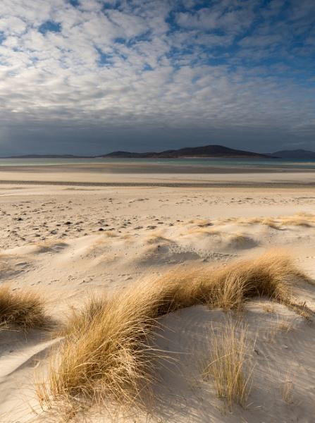 Golden Dunes by Stumars