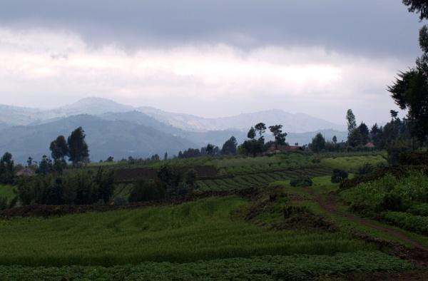 Rwandan landscape by JuBarney