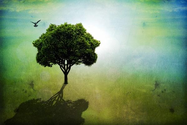The tree by fellingmal