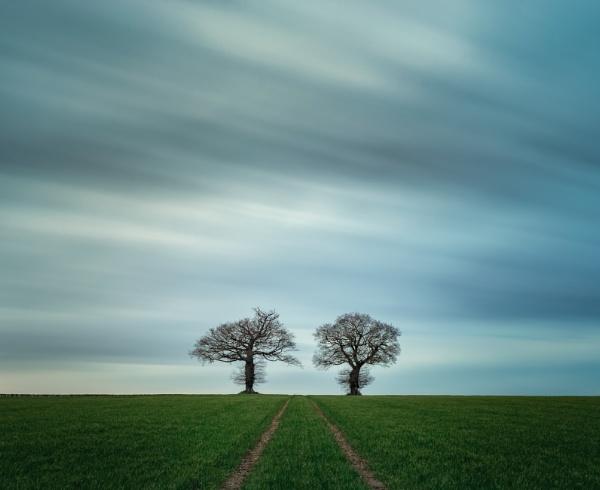 Twins by jpappleton