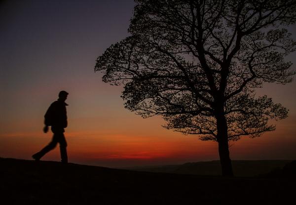 Lone walk Home by Pygar
