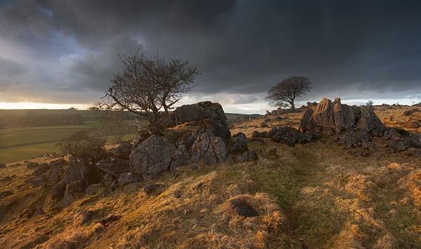 Roystone Rocks, Peak District by cooperr
