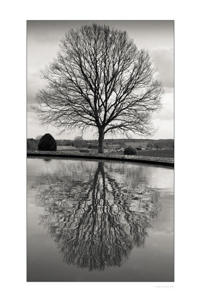 Reflection by minelab