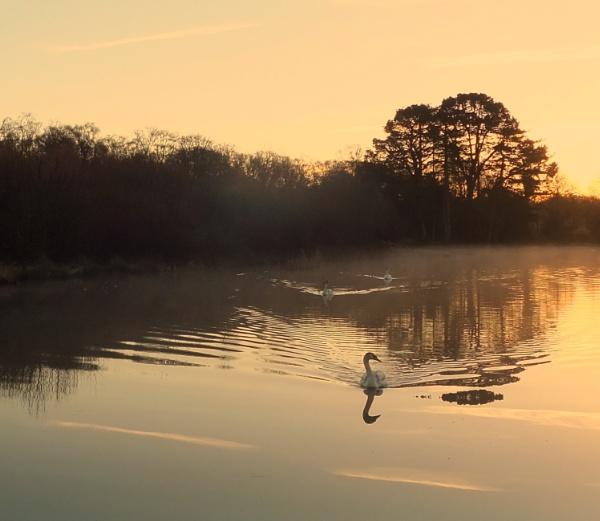 Sunrise Lake by SUE118