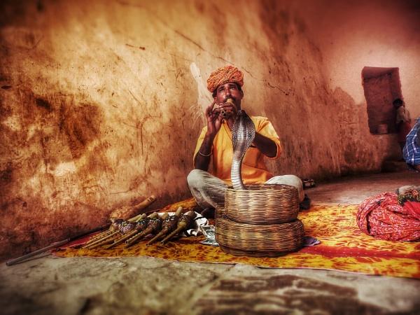 snake charmer india jaipur by vishhhy