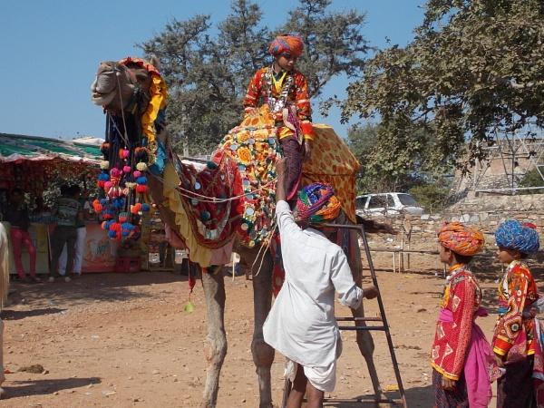 camel ride chittaurgarh rajasthan by vishhhy