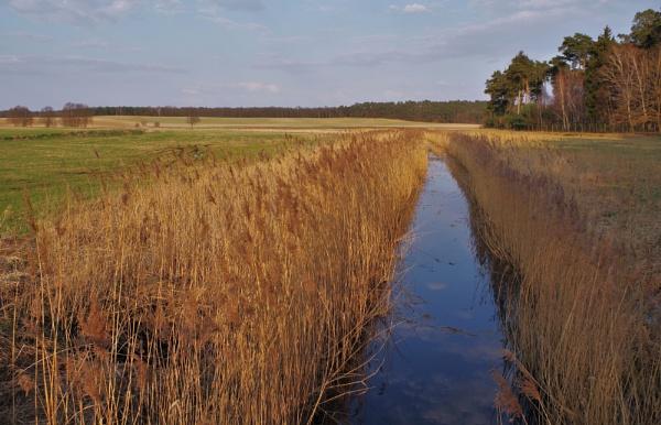 POLAND - Nature\'s Impressions No.55 by PentaxBro