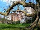 Mottisfont House 2 by pamelajean