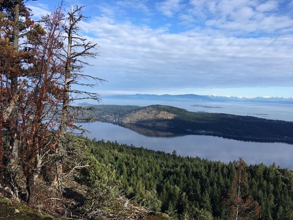 View from Sandwich Ridge by Bear46404