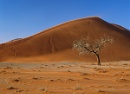 Dune Number 45 by hwatt