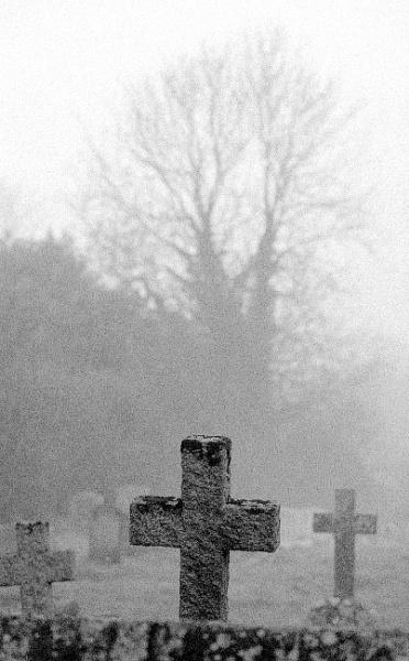 Misty morning by dudler