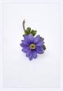 Little Blue flower by deavilin