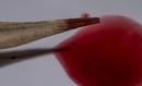 Bamboo Manicure